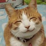 Dosis extra de energía: ¡Sonríe!