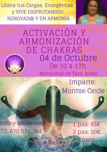 Armonización de Chakras (1)