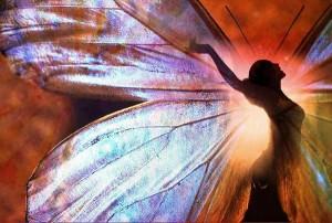 alas mariposa 5
